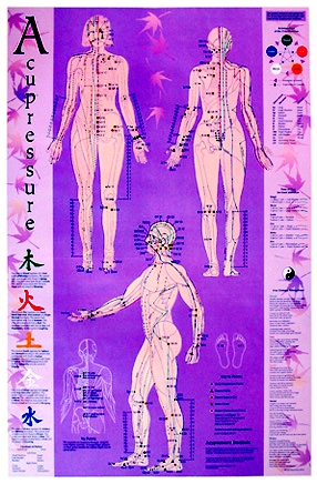 Acupuncture Chart with 5elements